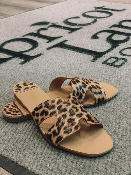 Cheetah Slides *Final Sale*