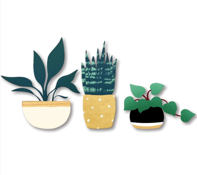 House Plant Magnets