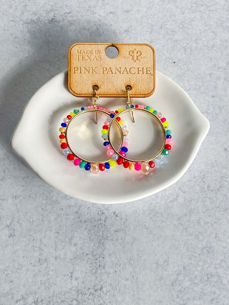 Feel the Rainbow Earrings
