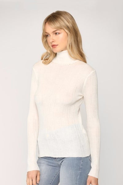 Fitted Turtle Neck Knit Top