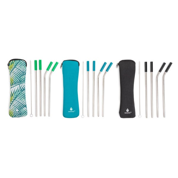 6pc Straws with Tips and Cleaner