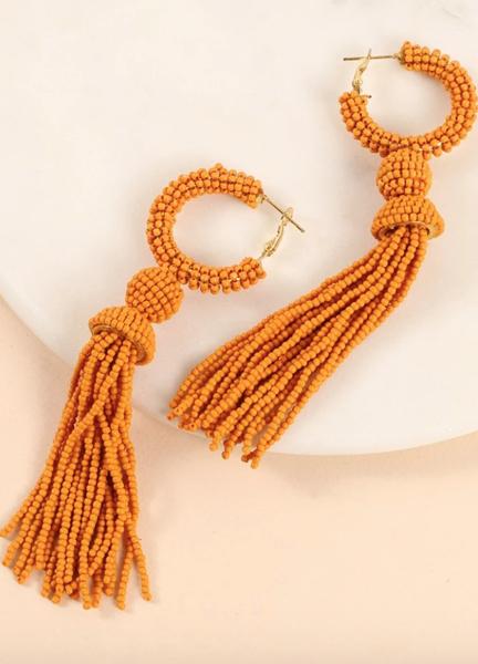 Tassel Around Earrings
