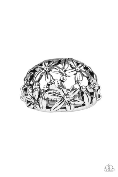 Haute Havana - Silver