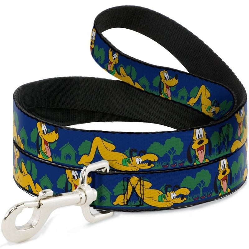 BUCKLE DOWN DOG LEASH - PLUTO 4-POSES/LANDSCAPE BLUE/GREEN
