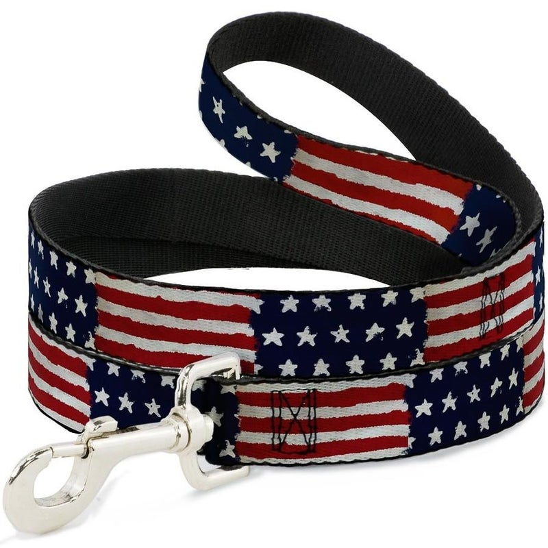 BUCKLE DOWN DOG LEASH - STARS & STRIPES PAINTING