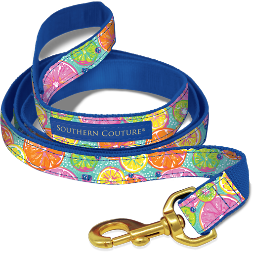 Citrus Dog Collars & Leashes