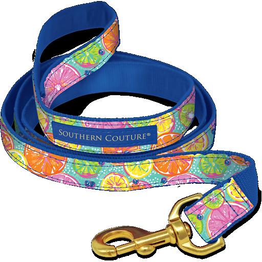 Citrus Dog Collars & Leashes
