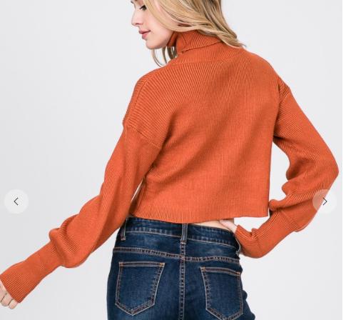 Fall Picnic Cropped Sweater