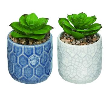 Faux Succulent (2 piece set)