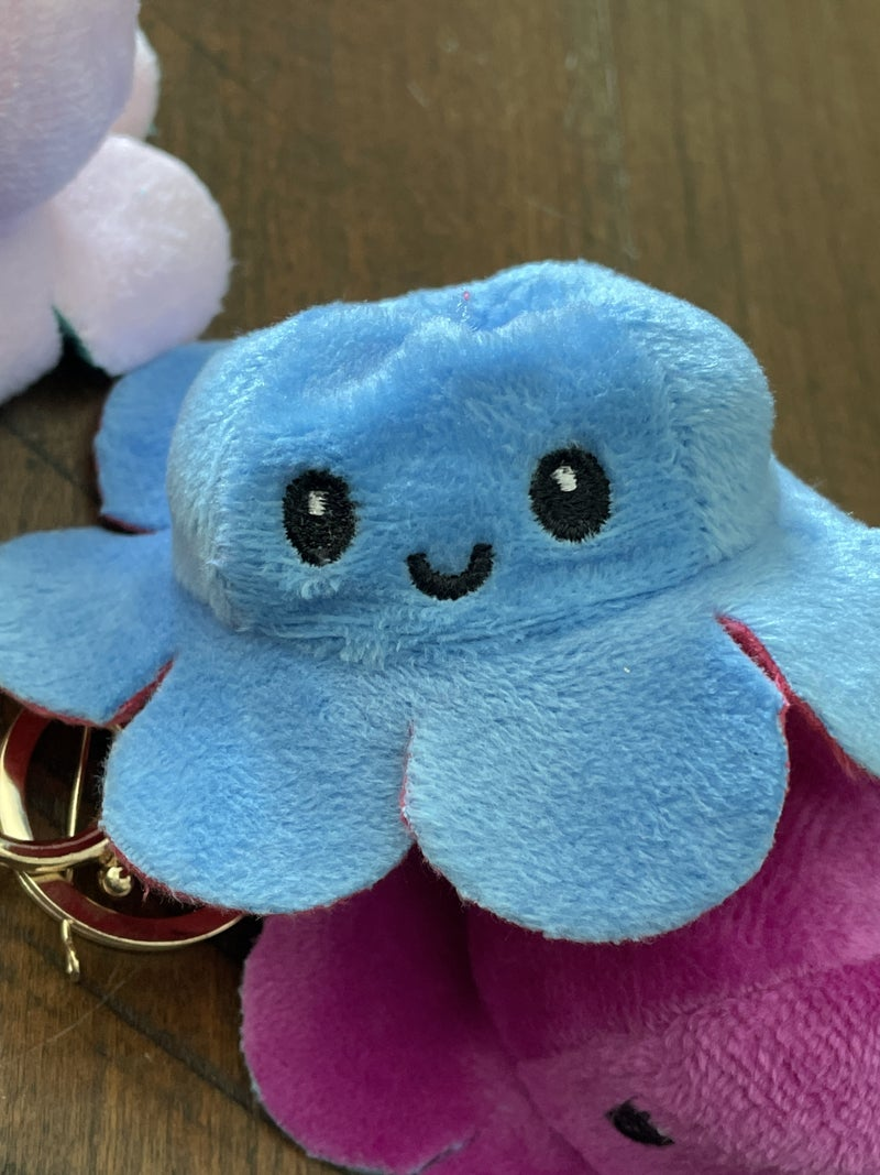 Mini Octo- moodies Key chains