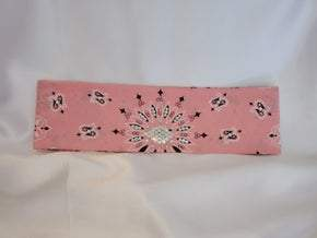 Light Pink Paisley with Pink and Diamond Clear Swarovski Crystals (Sku2150)