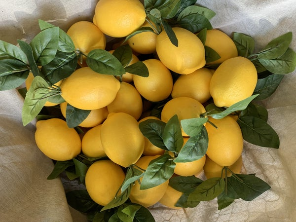 Lemon W/ Foliage Bundle of 6