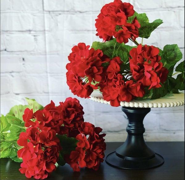 Red Geranium Bush
