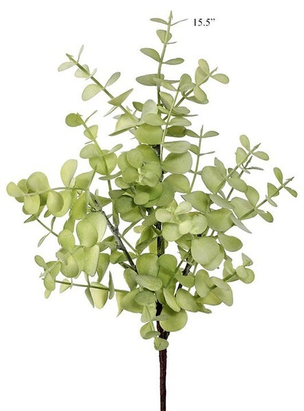 "Eucalyptus Pick, Green 15"""
