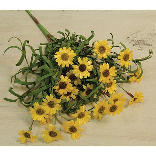 Mini Mountain Daisy Pick - Yellow