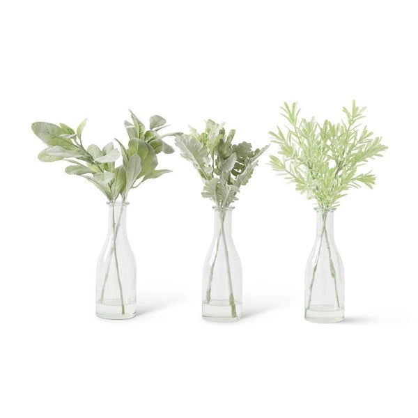 Glass Bottle with Dusty Miller, assorted