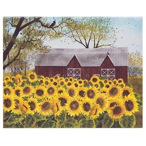 8x10 Canvas, Sunflower Farm