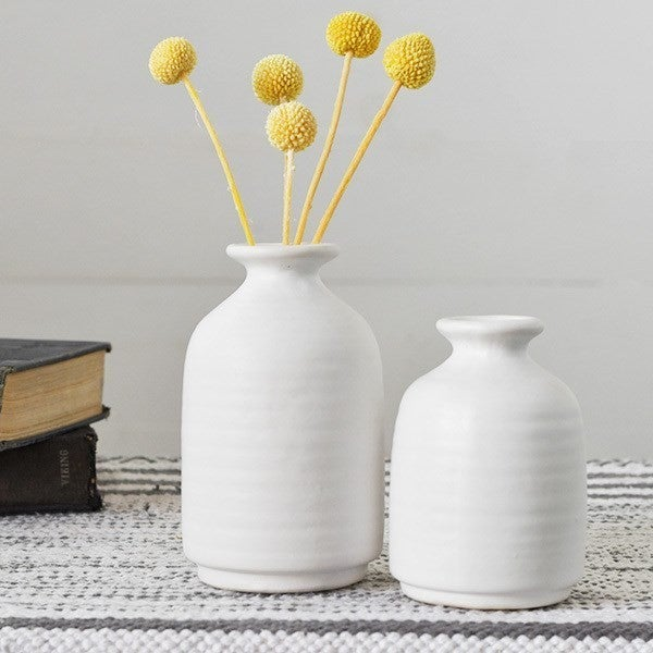 Set of 2 Matte White Vases