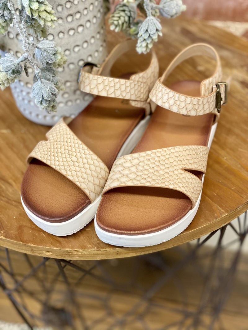 The Amnity Not Rated Sandal
