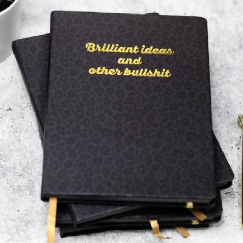 Brilliant Ideas and Other B.S. Journal