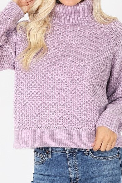 Chilly Days Heathered Turtleneck Sweater