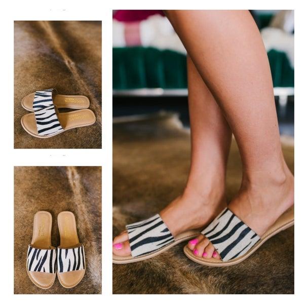 Zebra Slides
