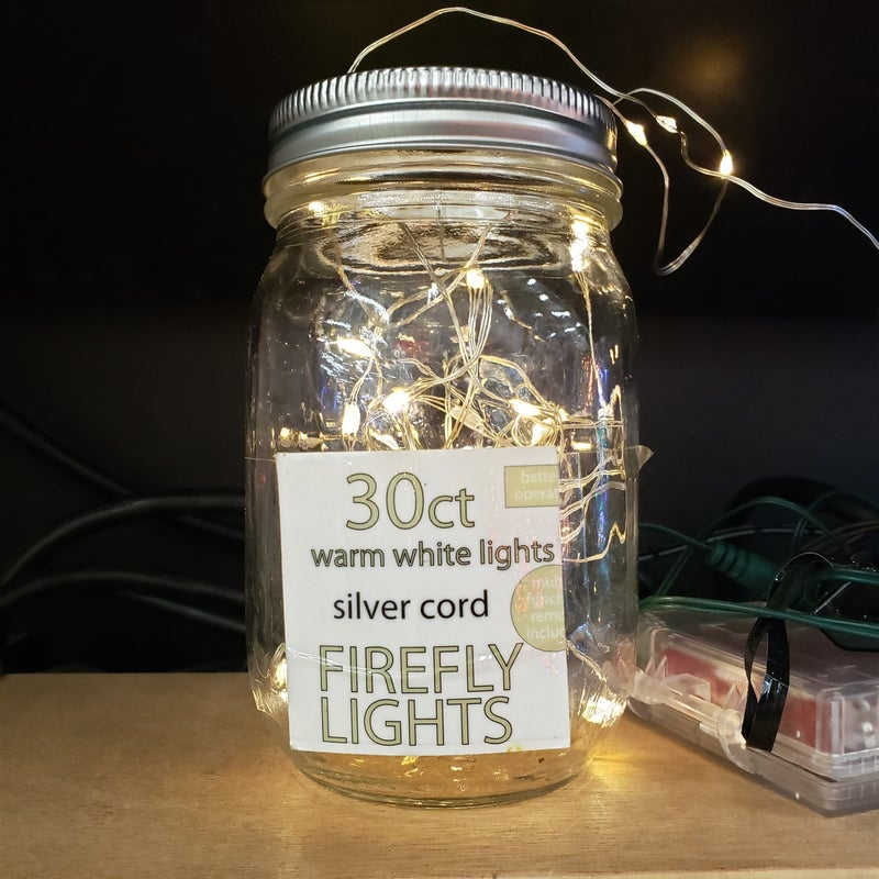 Warm 30 ct Firefly Lights, silver cord with remote