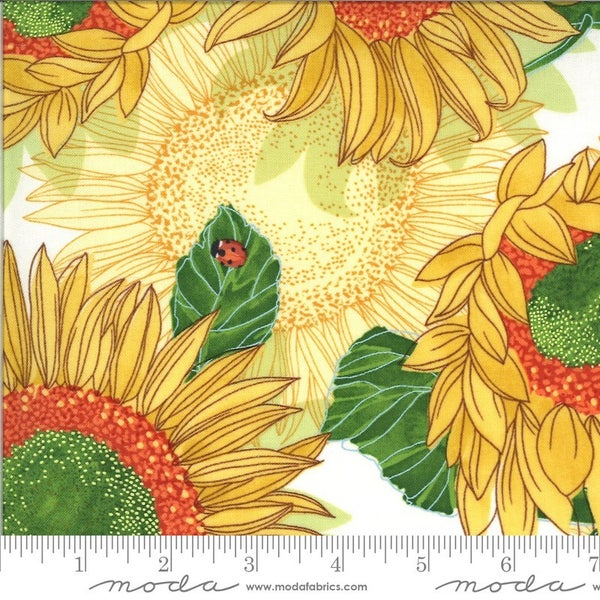 1 Yard Cut - Solana Collection Sunflowers in Cream - Designed by Robin Pickens for MODA Fabrics