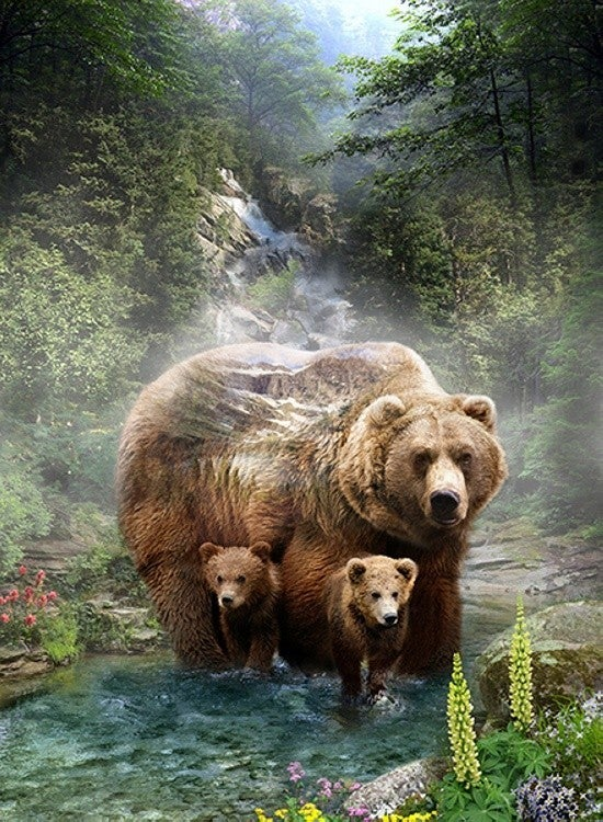 "43"" x 33"" Fabric Panel, Call of the Wild, Grizzlies"