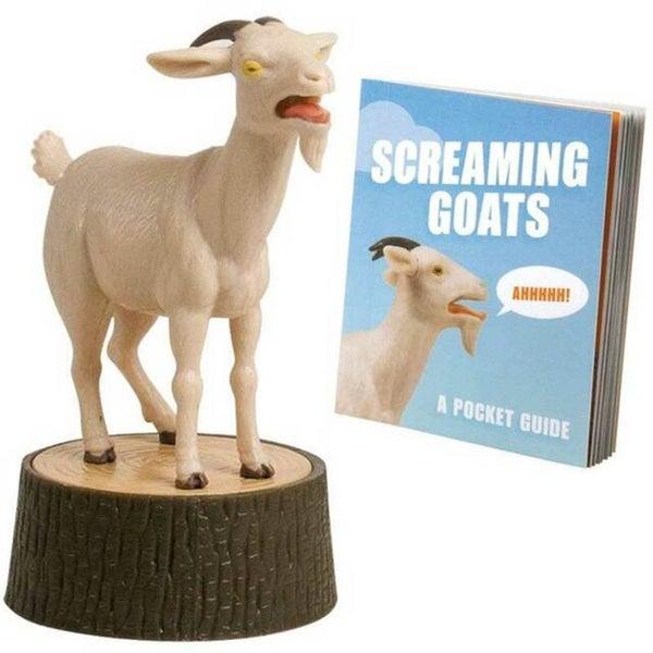 Mini- Screaming Goat