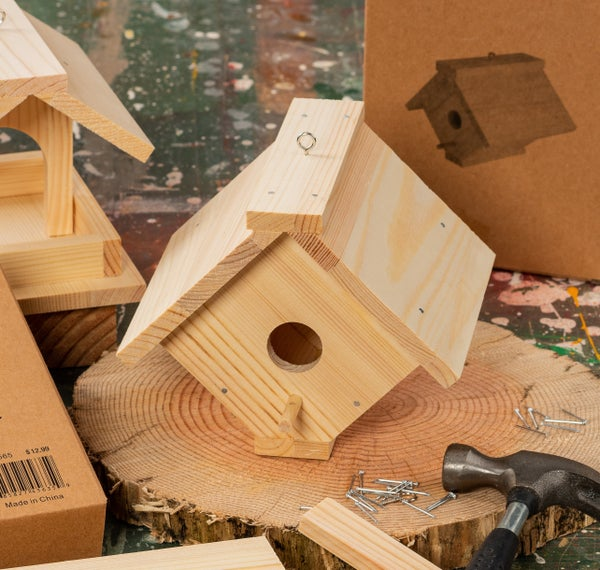 Make Your Own Birdhouse Unfinished