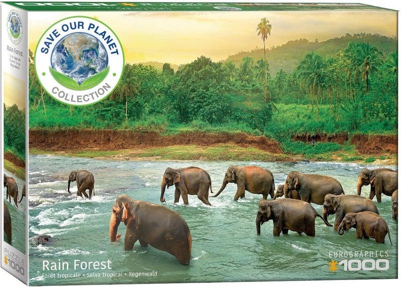 Save Our Planet! Rainforest