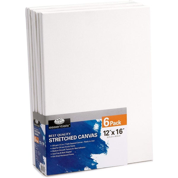 "12"" x 16"" 6/Piece Stretched Canvas Bundle Pack"