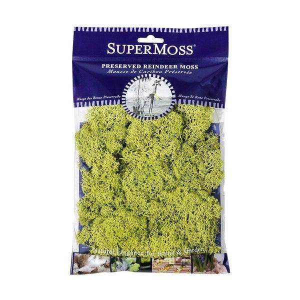 SuperMoss- Chartreuse Moss Mix 20z