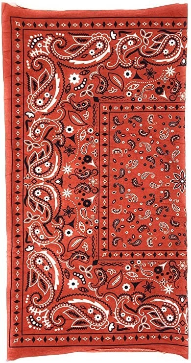 Seamless Bandana Red Paisley, Face Cover