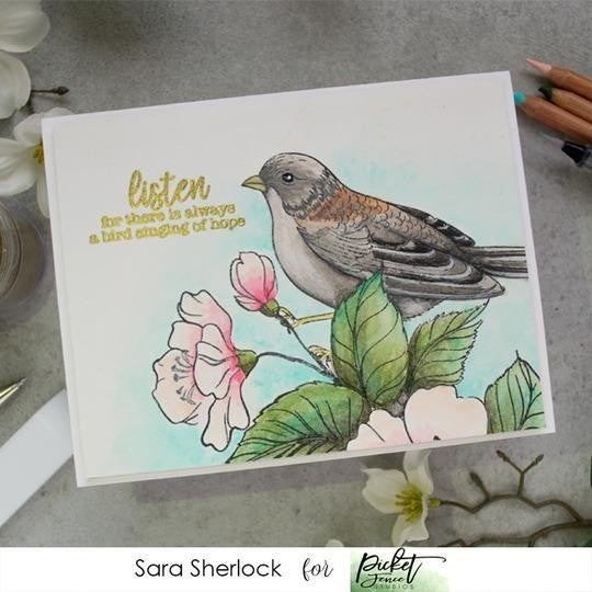 Picket Fence Studios-Beauty and Song