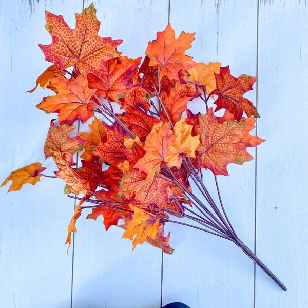 Maple Leaf Bush, Orange