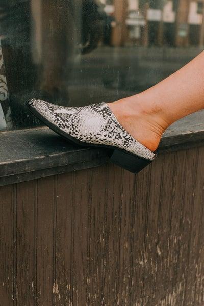 Snake Skin Mule Shoes