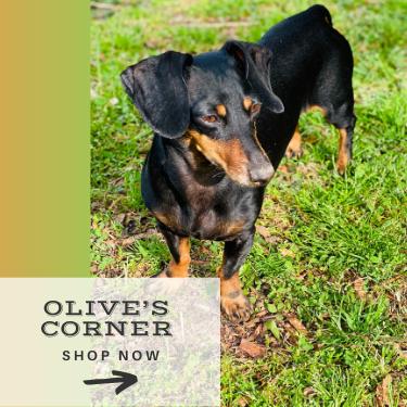 Olive's Corner