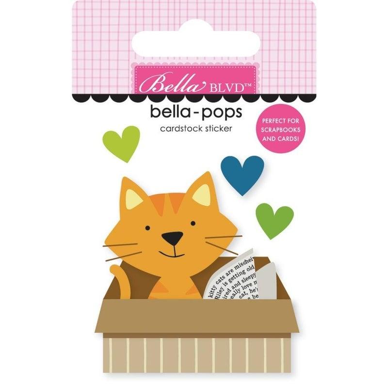 Cat in a Box  Bella-pop