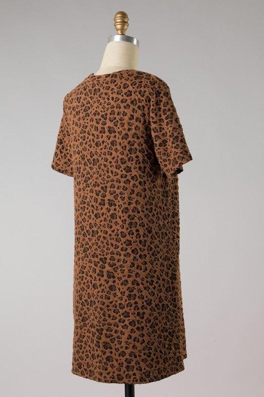 Cats Will Play Dress