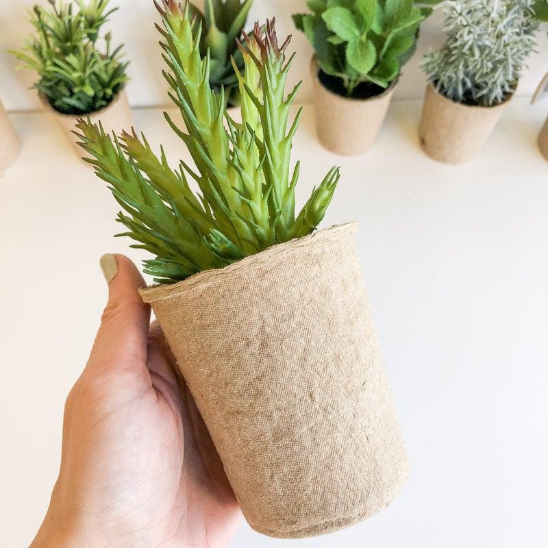 Little Green Plants - faux
