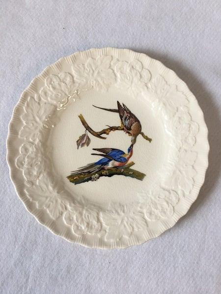 Collector bird plate Passenger Pigeon