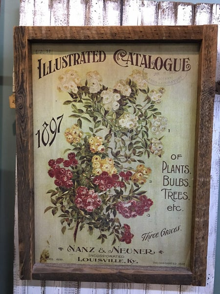 """Framed """"Illustrated Catalogue"""" transfer on reclaimed wood"""