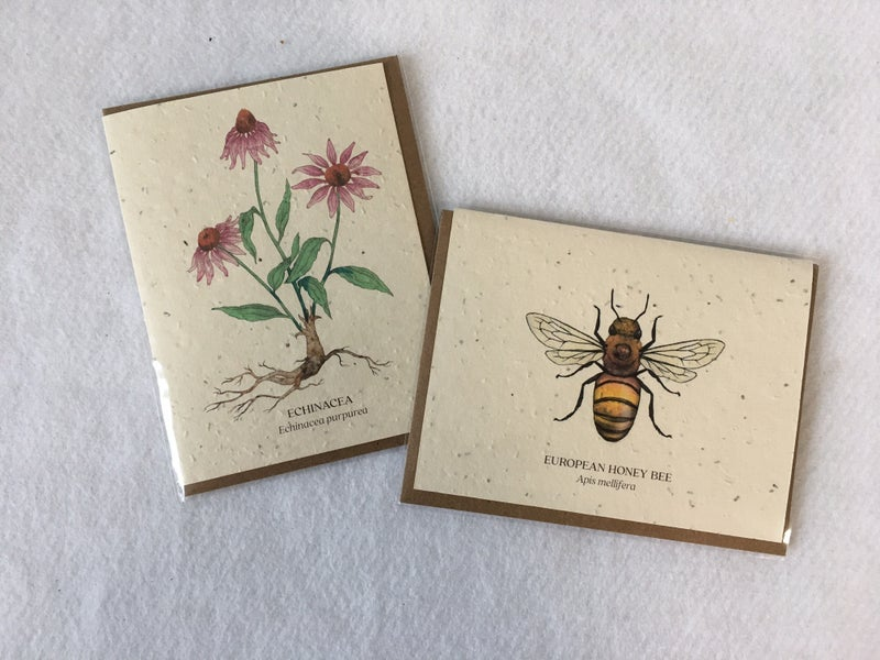 2 plantable greeting cards