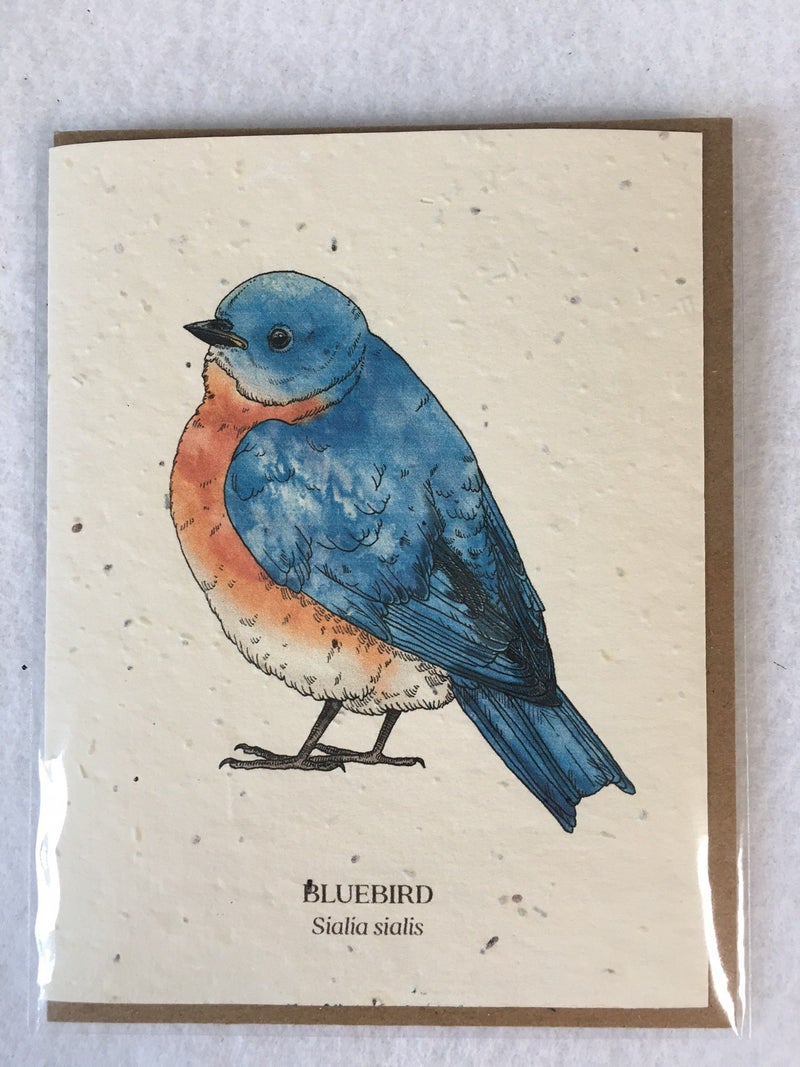 Plantable card with Bluebird