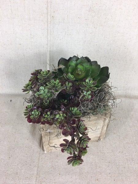 Small box w/faux succulents