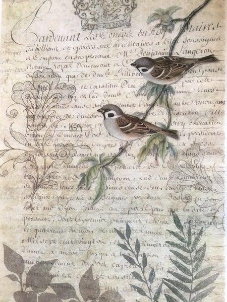 Decoupage Queen Tissue paper, birds w/text