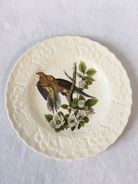 Collector plate Carolina Turtle Dove