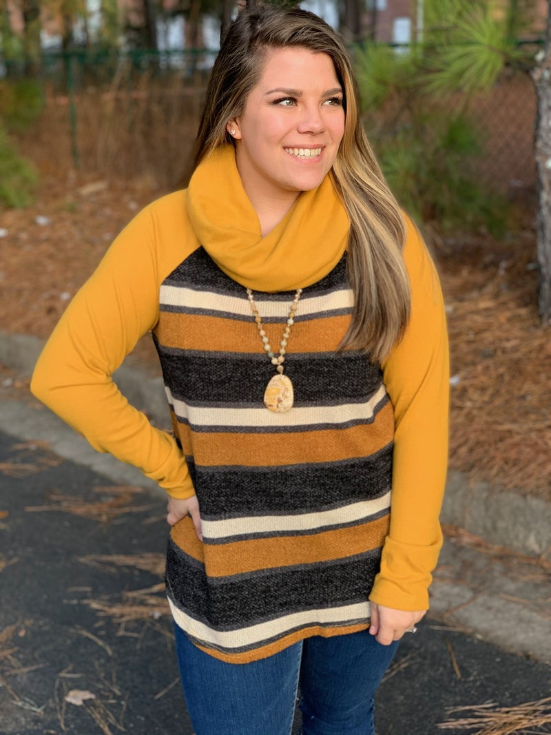 Solid and Striped Contrast Raglan Cowl Neck Top, Mustrad *Final Sale*